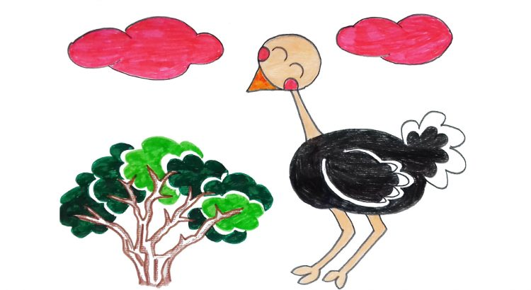 Ostrich clipart simple and easy cartoon drawing by hand for kids