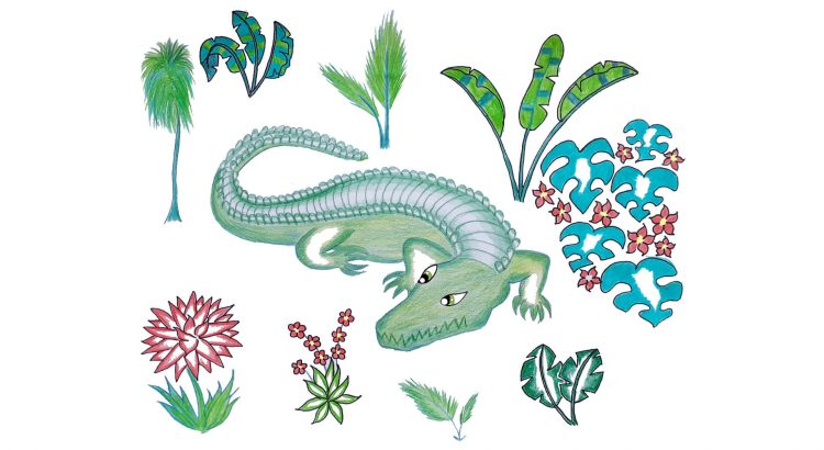 crocodile cartoon drawn by hand